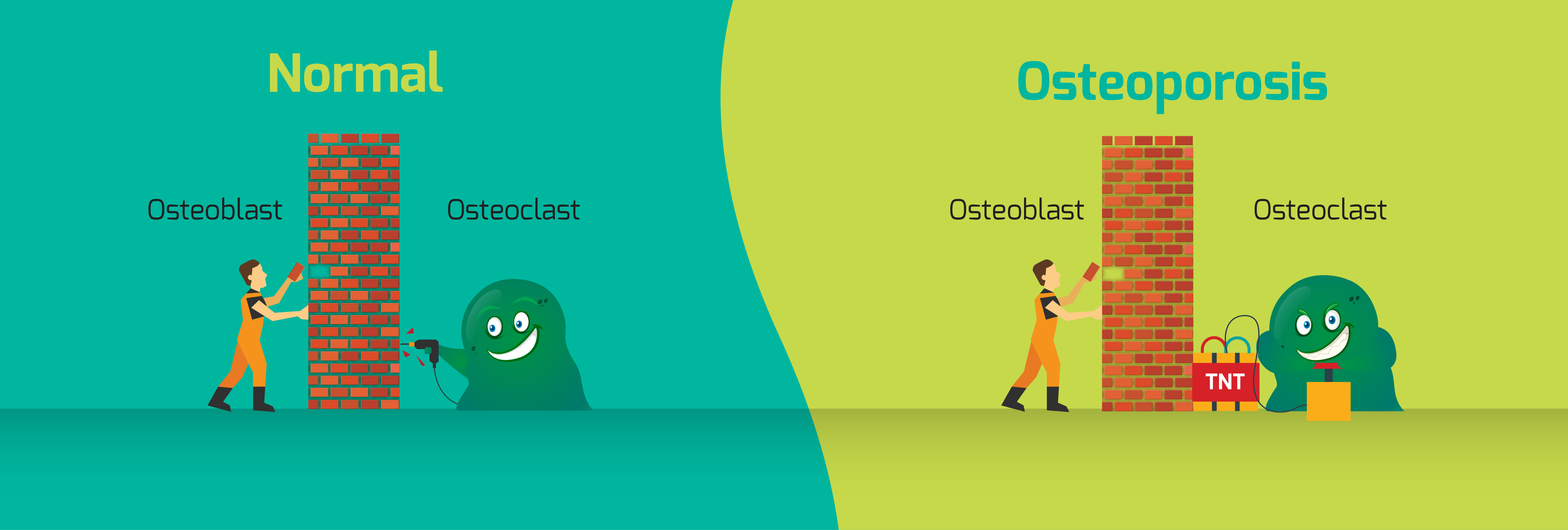 Taking part in World Osteoporosis Day