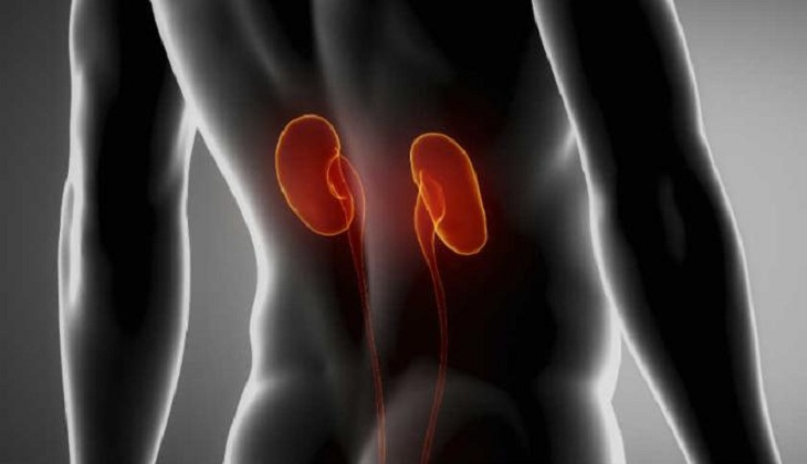 Early Detection of Kidney Disorder